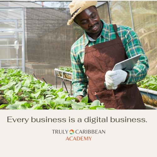 Every business is a digital business - Truly Caribbean Academy